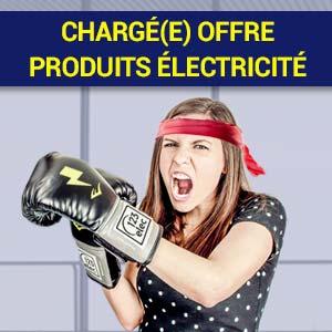 Recrutement : Chargé(e) offre produits électricité