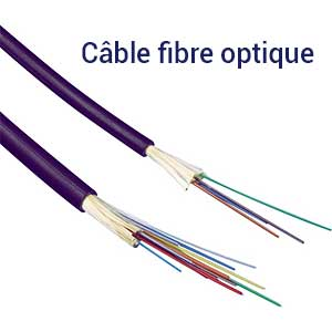 Câble pour fibre optique